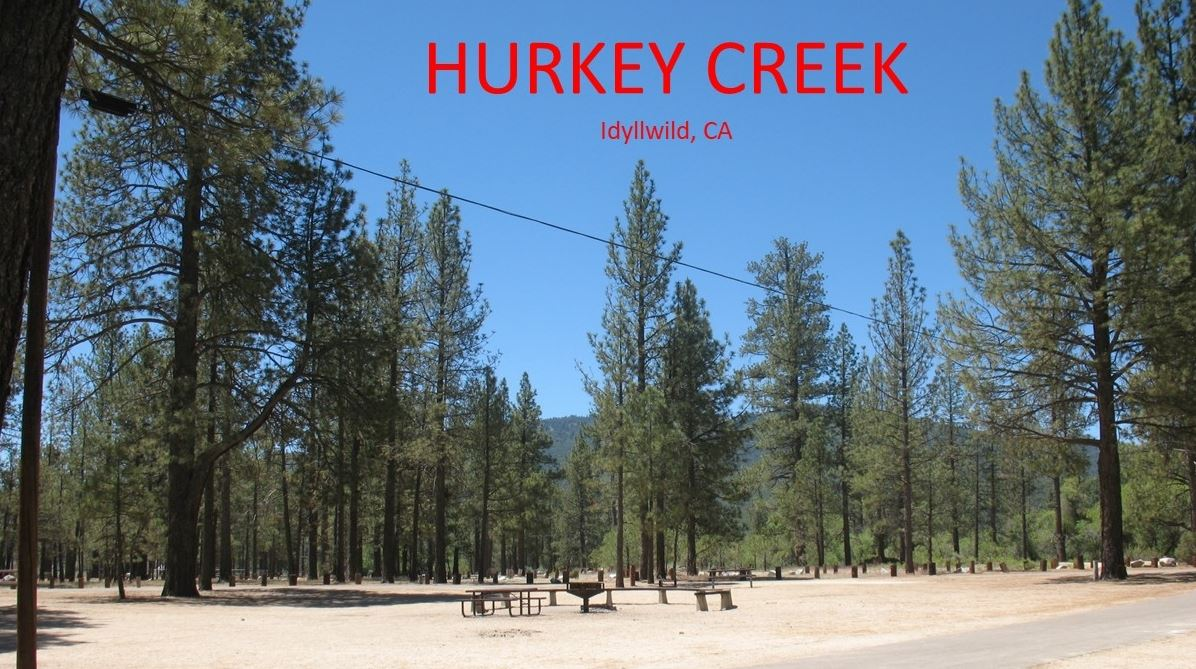 CA Great Outdoors Inc  - PS - Hurkey Creek Campout (Idyllwild)